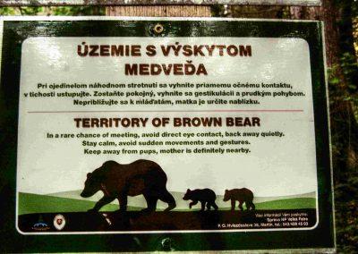 Tlstá je územím medveďa hnedého.