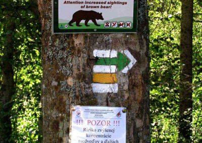 Po medveďom chodníku na Borišov.