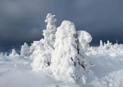 Jagajú sa miliardami mrazivých kryštálikov snehu.