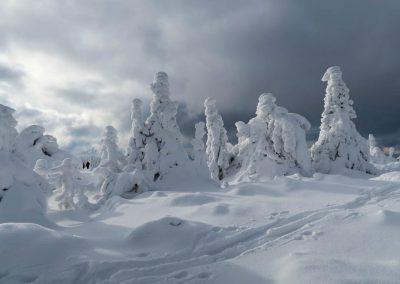 Martinské hole sú v zime magické.