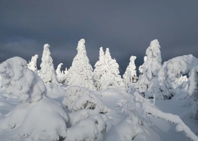 Martinské hole sú v zime rozprávkové.